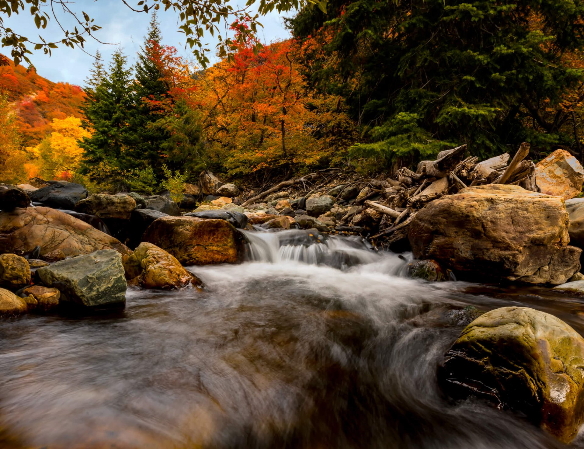 Buy A Website >> Fall Color Images by Dave Koch Photography