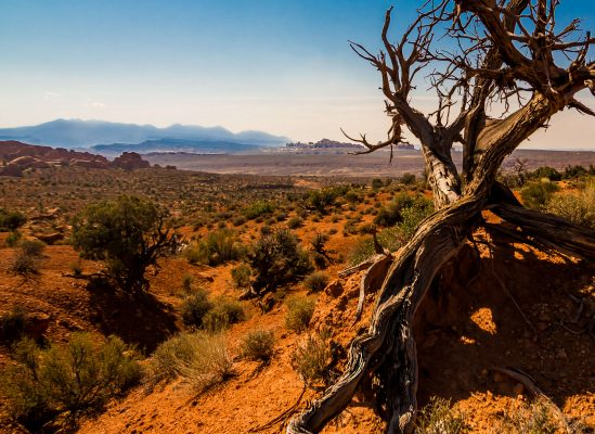 Arches and Canyonlands Landscape Photography