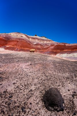 Capitol Reef - Red Hills