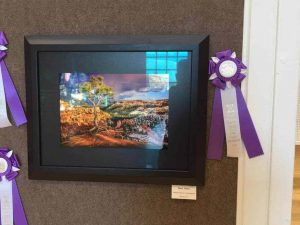 Best of Show in the Fine Art Photography competition at the Utah State Fair