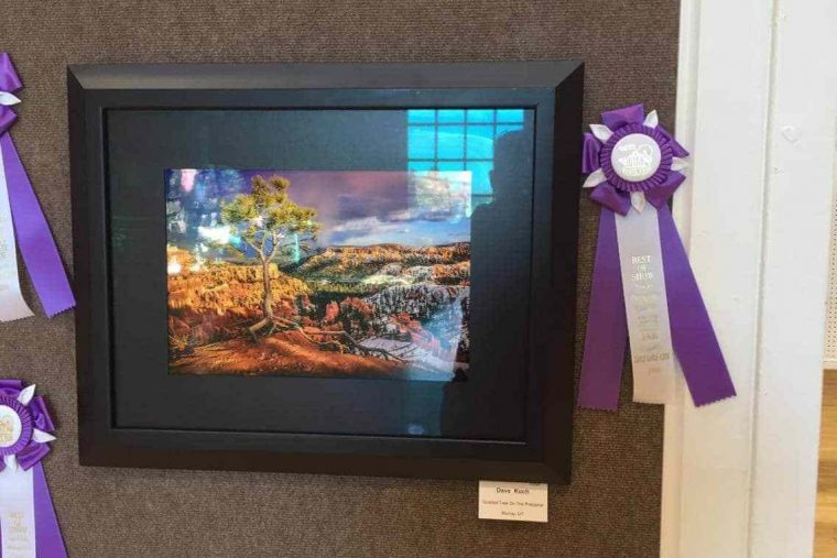 Best Of Show, Utah State Fair