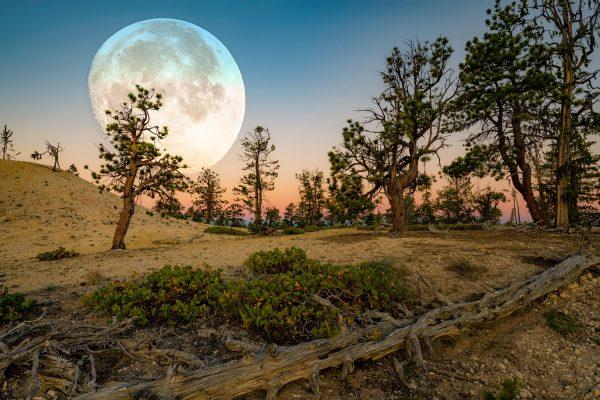 Bryce Canyon Moon